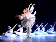 "The best of ""Swan Lake"", P. I. Tchaikovsky"